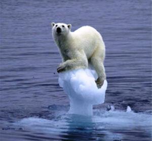 Global-Warming-Kills-Polar-Bear